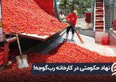نهاد حکومتی در کارخانه رب گوجه!