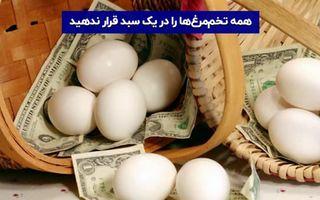 همه تخممرغ ها را در یک سبد قرار ندهید